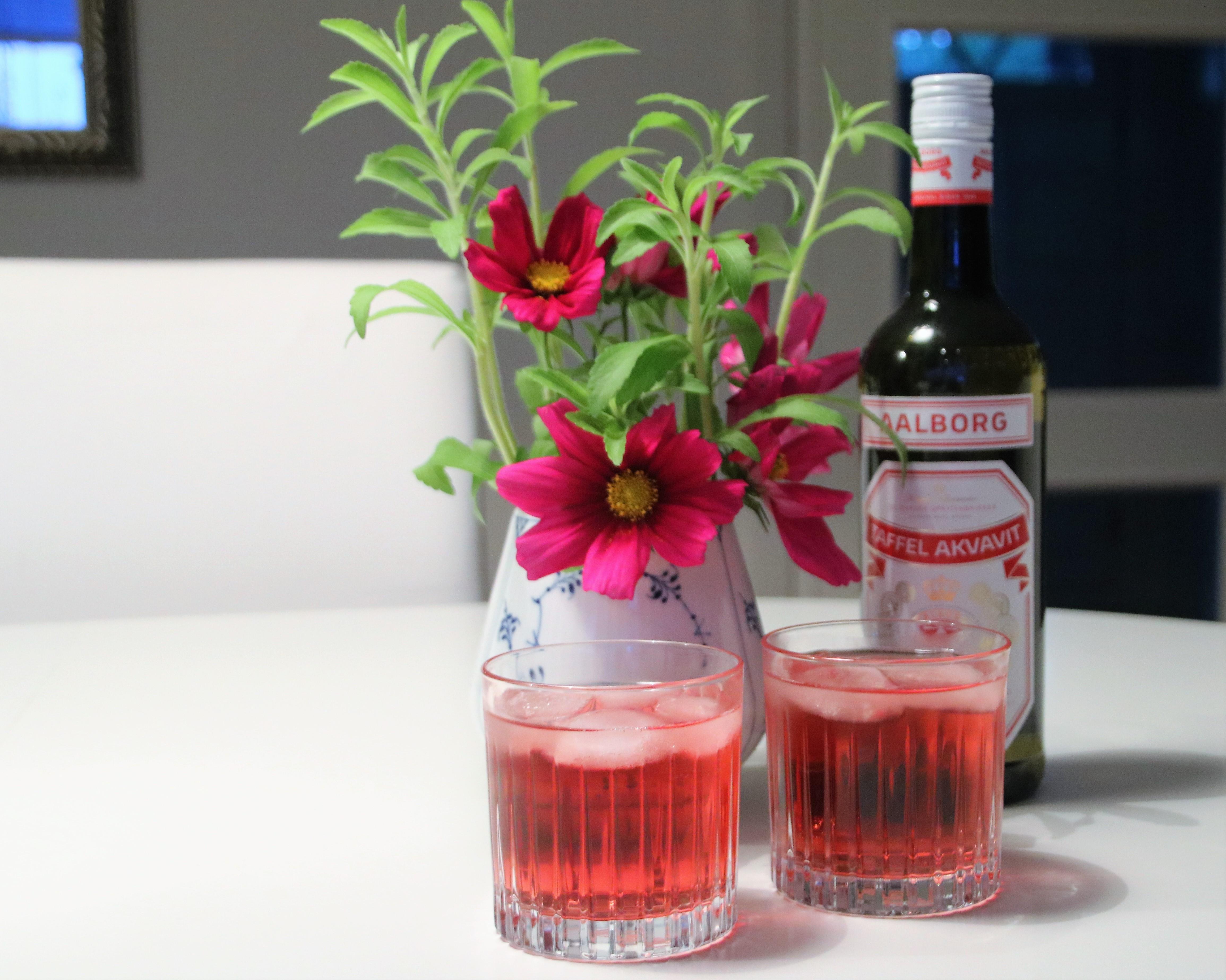 Akvavi´tails  drink – brug snaps på en anden måde