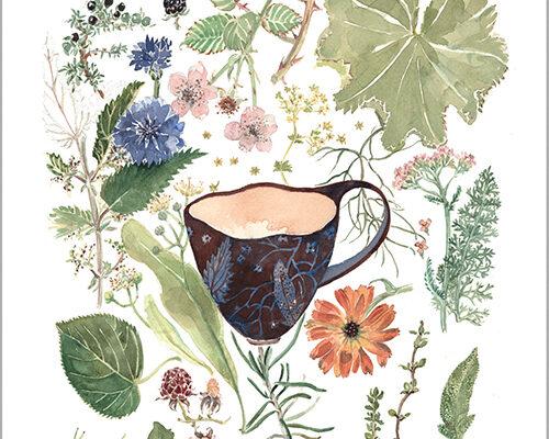 urtete fra natur og have